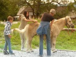 Tierpflege - Reitpädagogische Betreuung