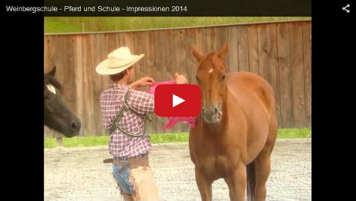 Tierpflege - Video Titelbild